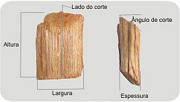 Cavacos de Madeira