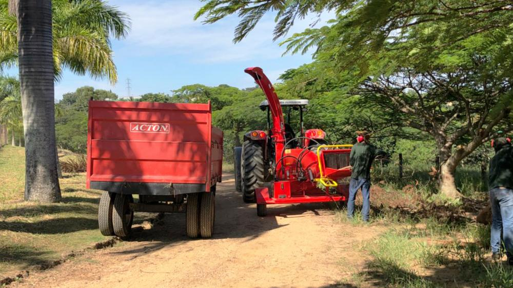 Forestry chippe delivered to the sheep raising farm to clean pruning of forest management
