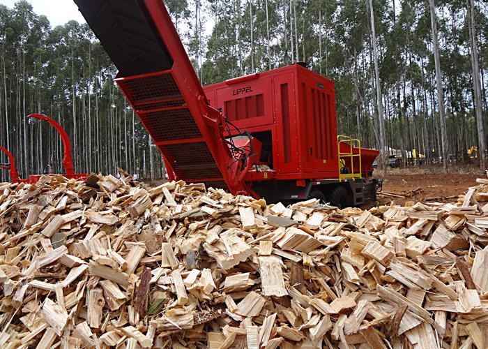 Lippel tem as melhores soluções para Biomassa como combustível