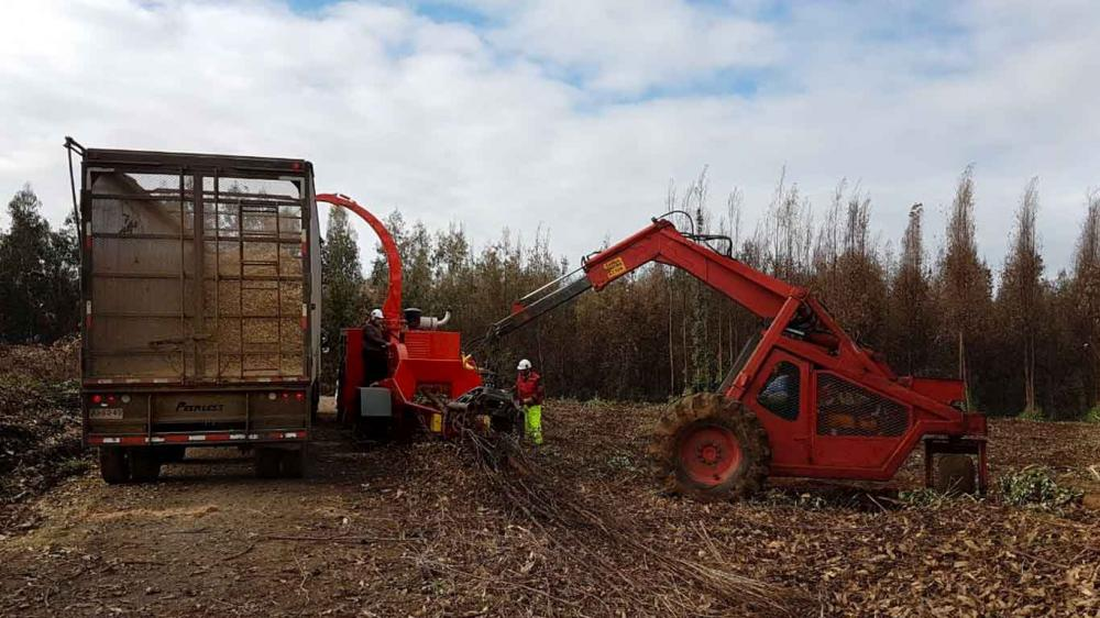 Wood Chipper  PFL 400 X 700 M in full operation in Chilean forests.