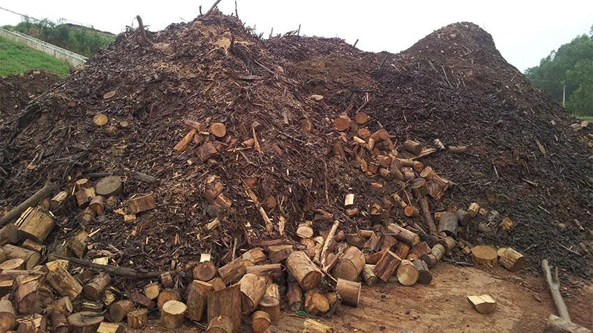 Aproveitamento de resíduos da indústria de papel e celulose para uso como fertilizantes.