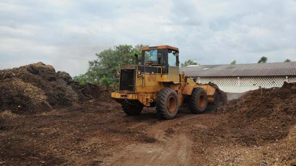 Beneficios del uso del compostaje en la agricultura