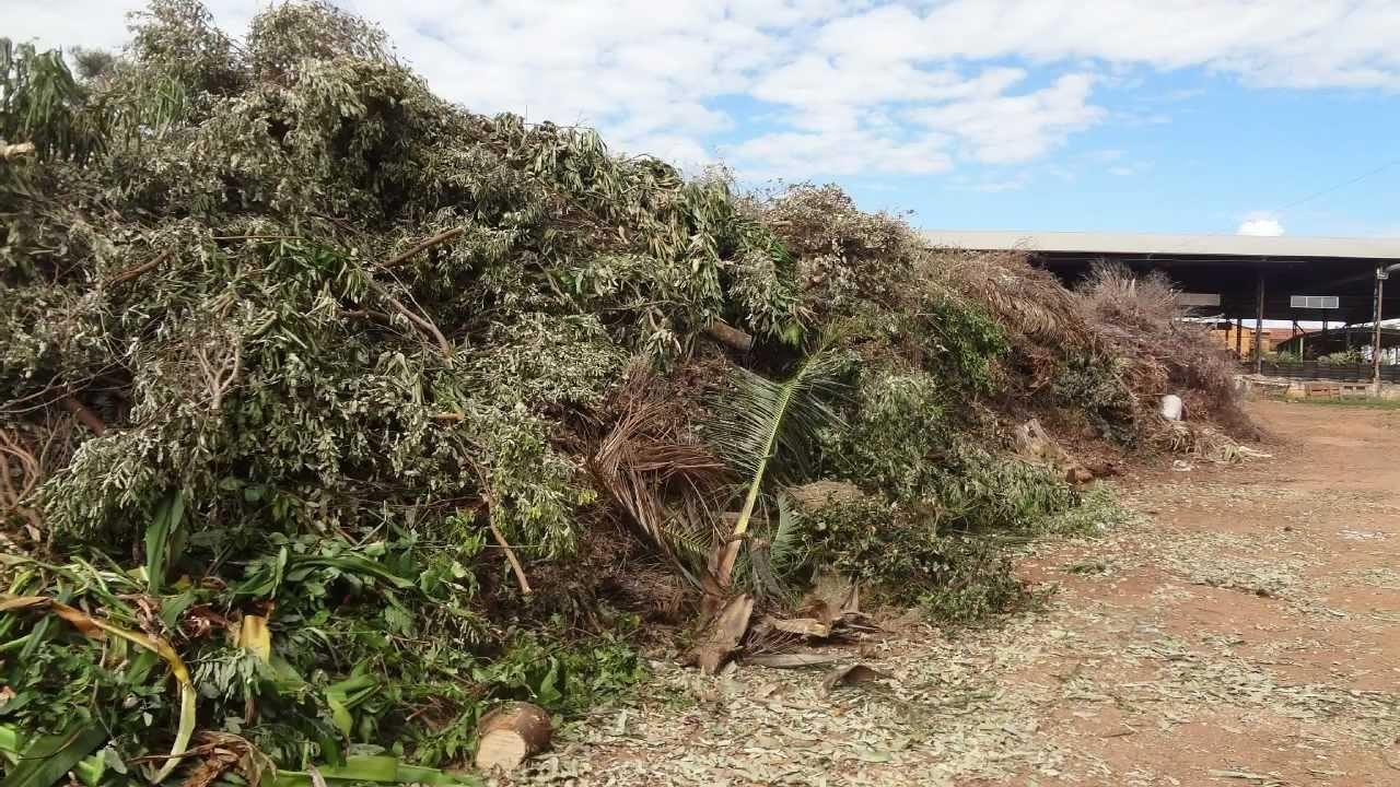 Como gerar economia no município com resíduos sólidos?