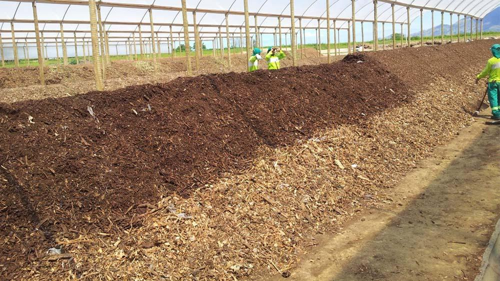 Composting Plant Projects