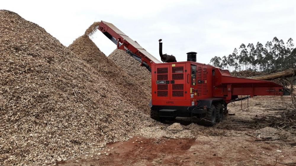 Forestry Chipper PFL 500 x 900 MC in eucalyptus processing