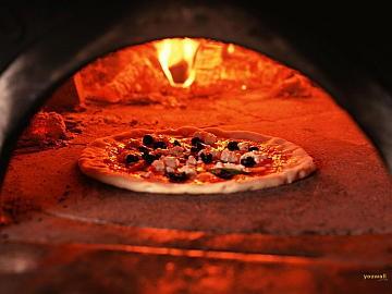 Fornos de pizza que queimam briquetes de biomassa
