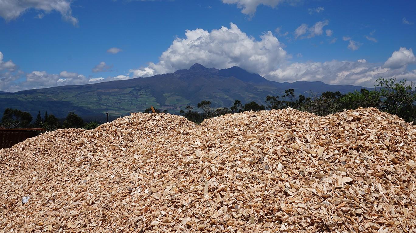 LIPPEL conquista mais um importante mercado: Equador
