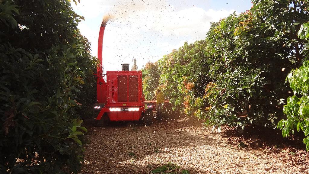 Solução para produtores de abacate e café, Picador Florestal Lippel PFL 400x700 M-S