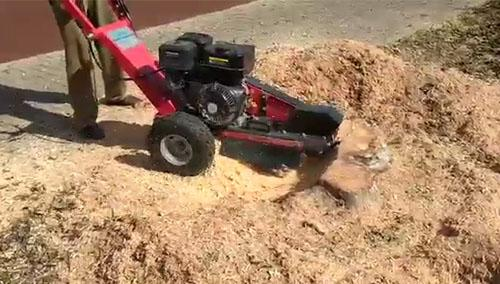 Stump grinder delivered to a service provider for urban cleaning