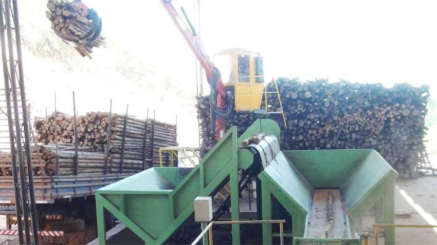 Solution for receiving and dosing of wood by mechanized unloading, providing automated step feeding.