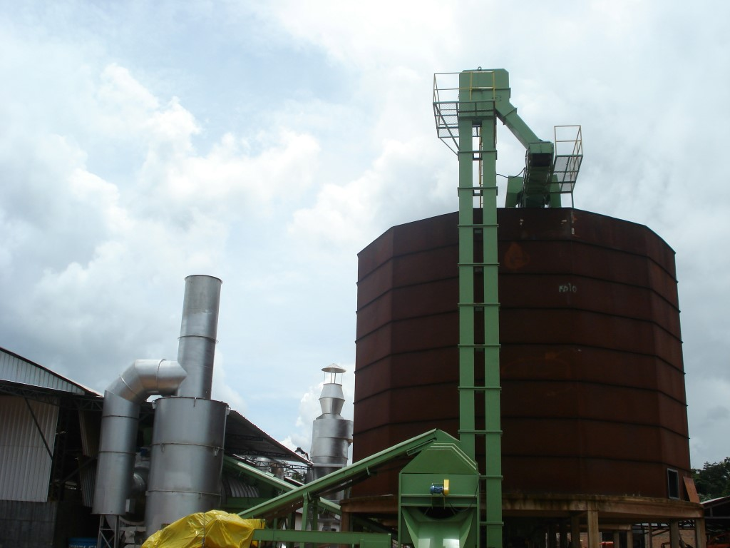 Bucket elevator installed on a vertical silo