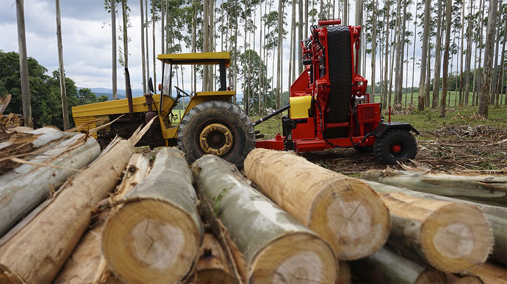 Capacity for logs up to 300 mm in diameter