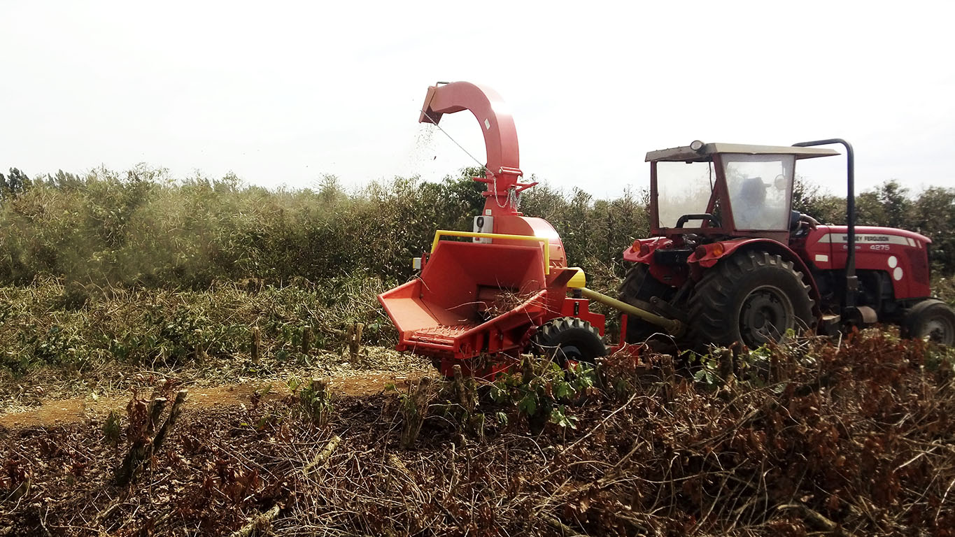 Chipper being used on coffee farm