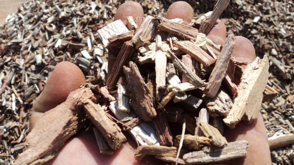 Maderas duras de chips producidos en la astilladora de madera tambor móvil PFL 400x700
