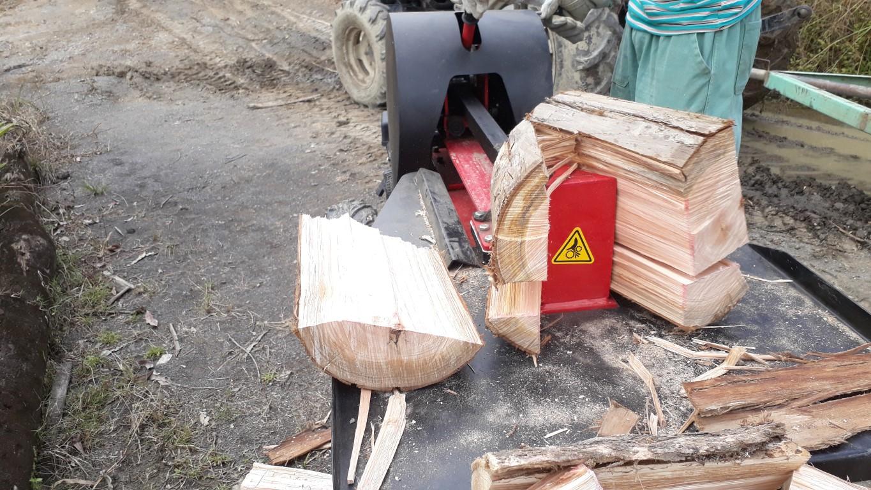Maximum force to break the trunks of 34 ton