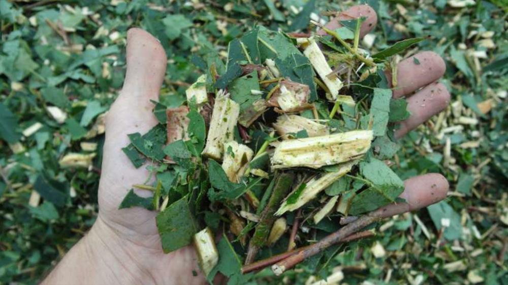 O Picador Florestal Castor 500 T também tritura galhos e folhas; produzindo material para compostagem.