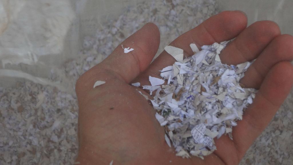 Papel triturado listo para ser utilizado para el reciclaje