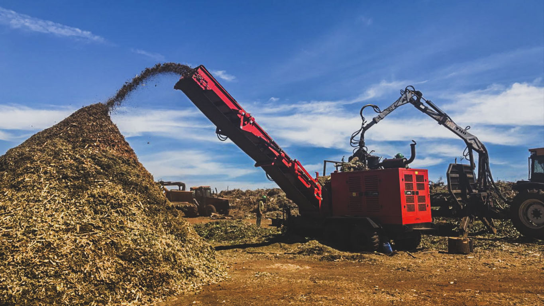 Picador Florestal de grande porte para processamento de toras de grande diâmetro