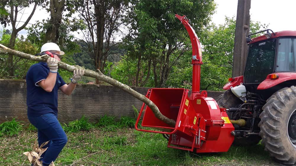 Procesa troncos de gran tamaño