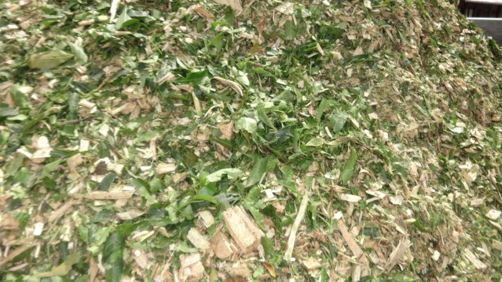 Resultado do Material triturado pelo PTU 300