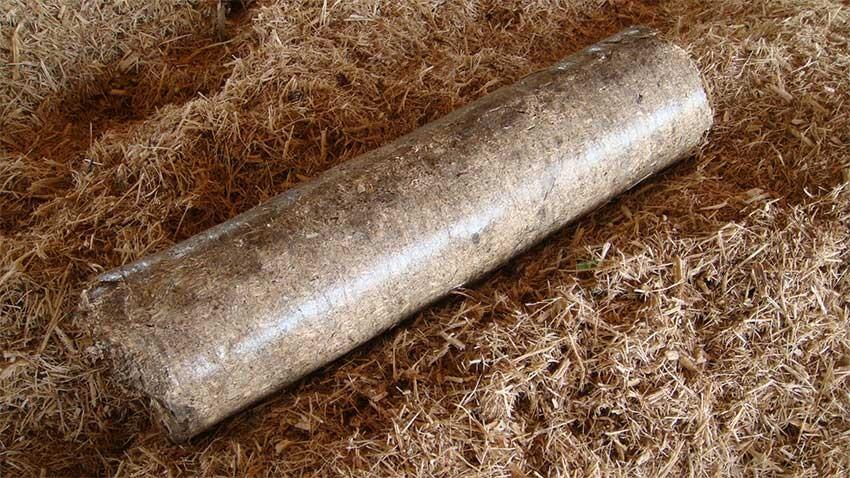 sugarcane bagasse briquette with bl 95