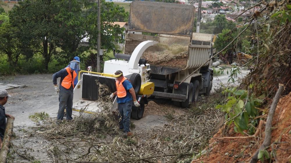 Triturando podas urbanas