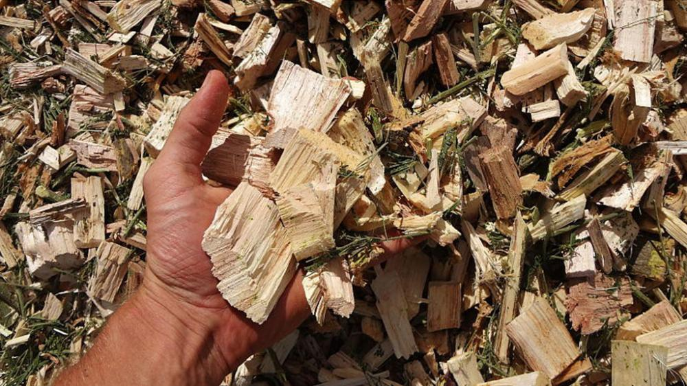 Wood chips of 65 mm