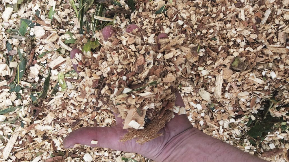 Wood chips produced by the PTU 400