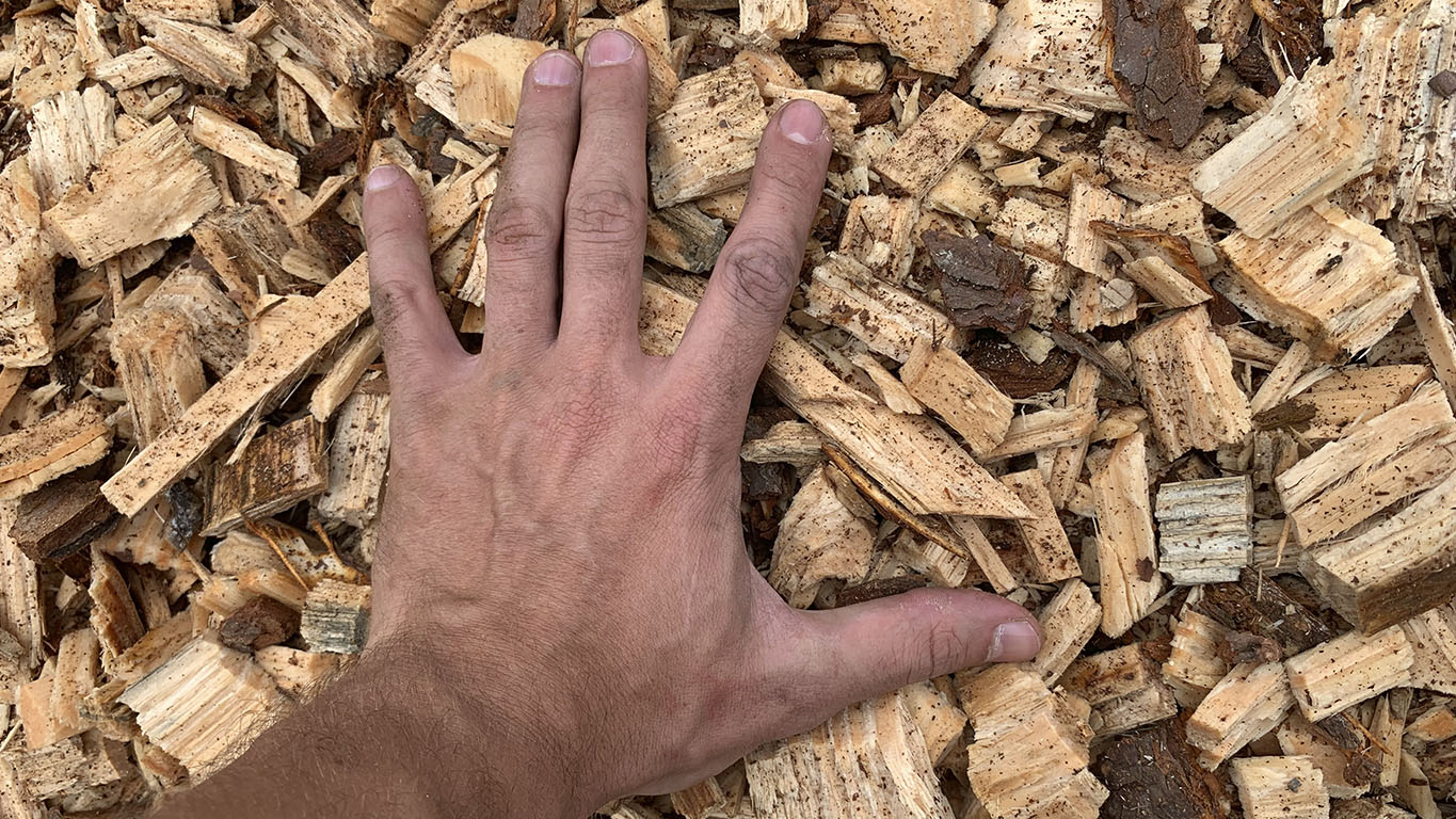 Wood chips with variable size